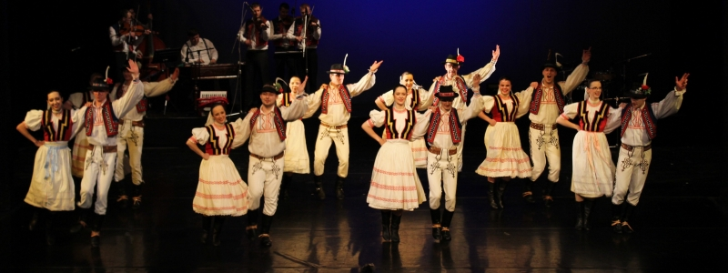 Tanečné a hudobné programy